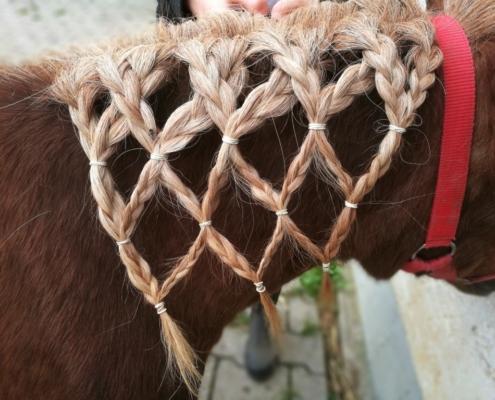 Pony aufhübschen mit Netzfrisur. Toll!