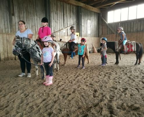 Heißbegehrt - die Ponys selber führen :-)